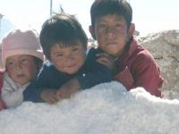 Bolivie : Enfants