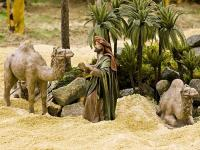 Homme aux chameaux