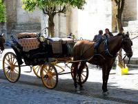 Séville : Calèche