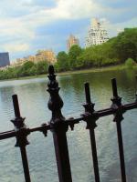Plan d'eau, Central Park