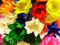 Arc-en-ciel de fleurs
