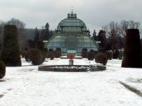 Schönbrunn serre