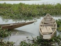 Barques au bord du Niger
