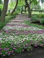 Pavés fleuris