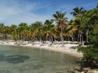 Guadeloupe Anse Champagne