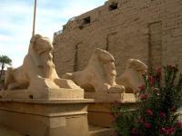 Allée des Lions