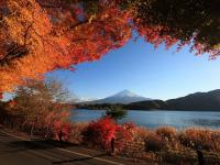 Scenery Autumn Mountains
