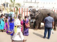 A l'entrée du temple...