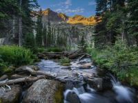 Rivière montagne et forêt
