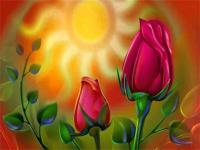 Soleil et roses