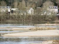 Bords de Loire