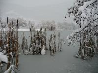 Lac St-André gelé